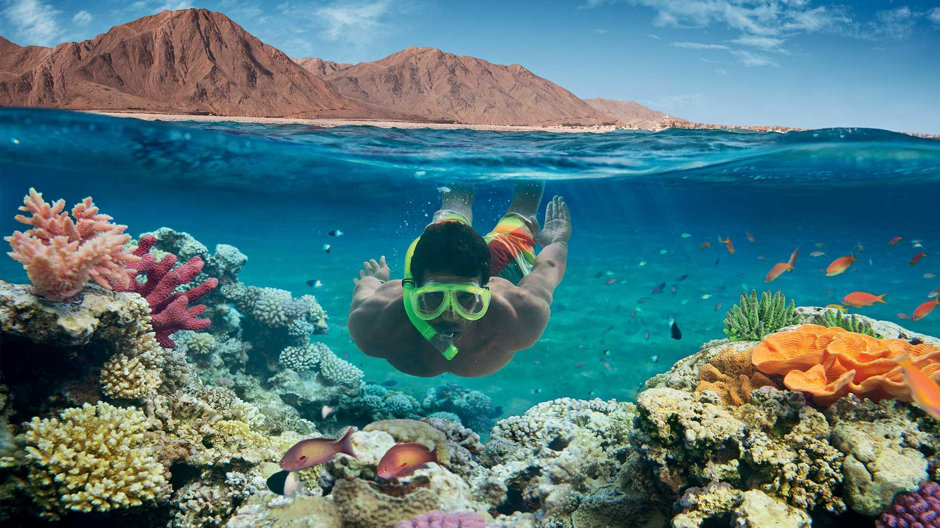 رويترز: إيرادات مصر من السياحة تقفز 212% في 9 أشهر.. وأعداد السياح تزيد بنسبة 55%