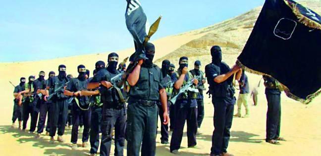 مصادر: انشقاق بـ«بيت المقدس» وهروب 40 إرهابياً من سيناء