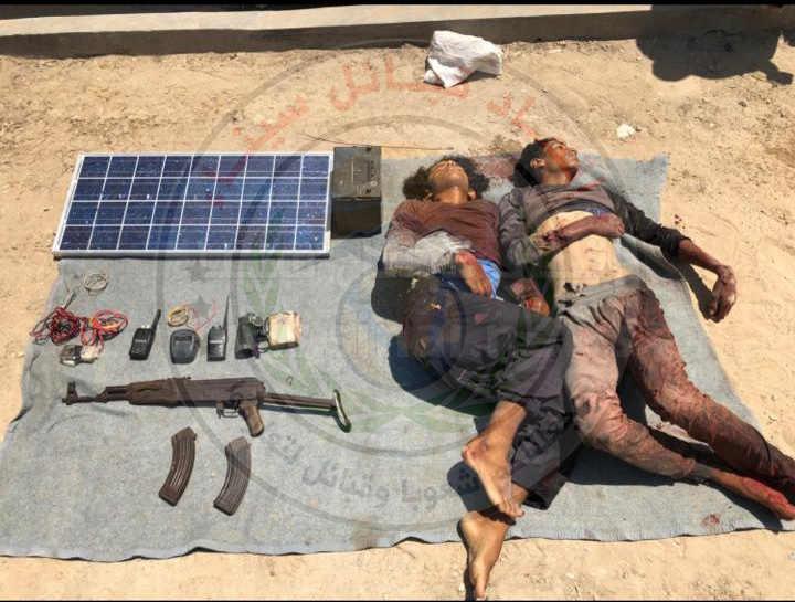 1 - وكالة سيناء نيوز