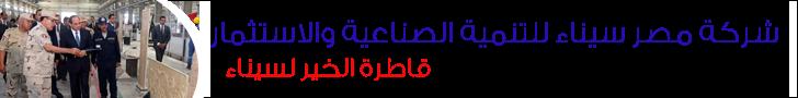 شركة مصر سيناء