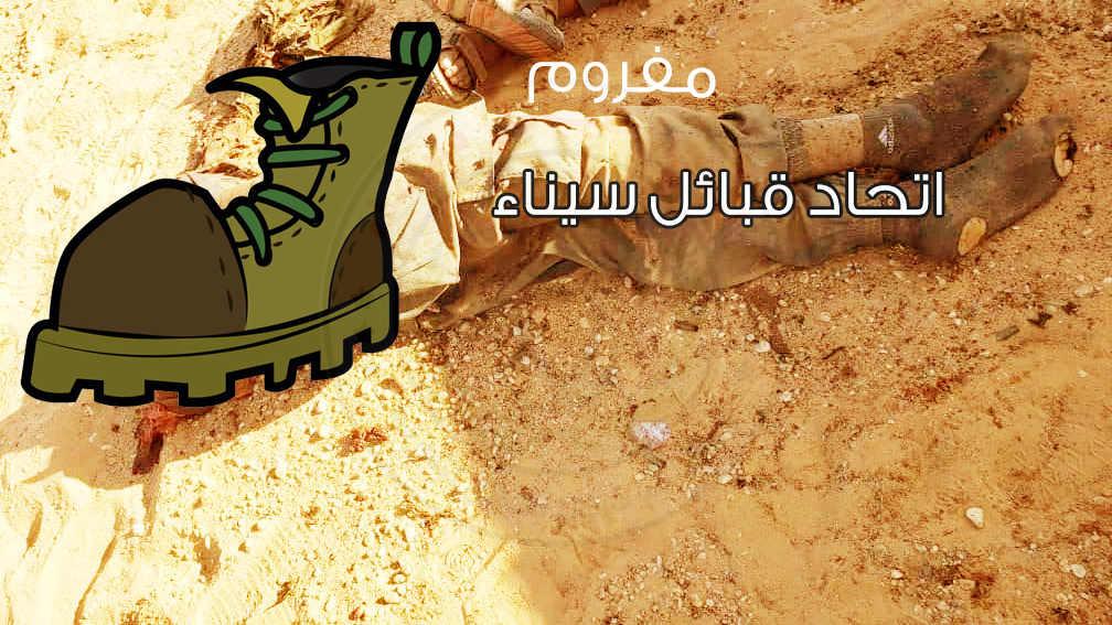 - وكالة سيناء نيوز