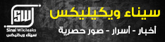 سيناء ويكيلكس