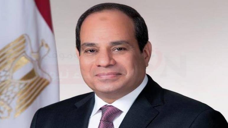 """""""أفريقية النواب"""": مبادرة الرئيس السيسي تؤكد أن القضية الفلسطينية ستظل فى قلب اهتمامات مصر"""