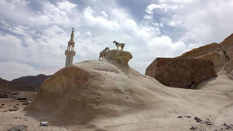 محافظ جنوب سيناء يستجيب لاستغاثة سكان تجمعات بير زغير ويمدهم بسيارات مياه شرب