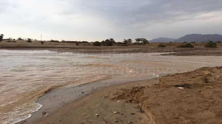 سيول الخير .. كيف تستغل شمال سيناء مياه الأمطار؟